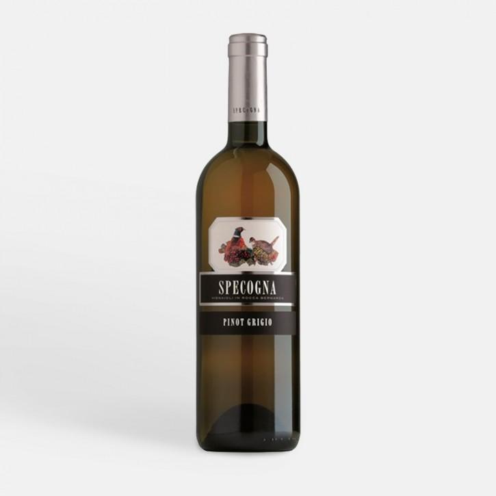 Specogna Pinot Grigio DOC COF 2019